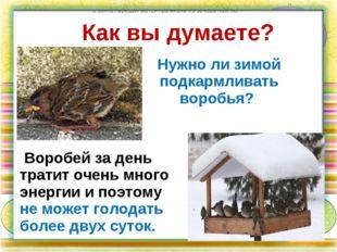 Как вы думаете? Нужно ли зимой подкармливать воробья? по земле передвигаются