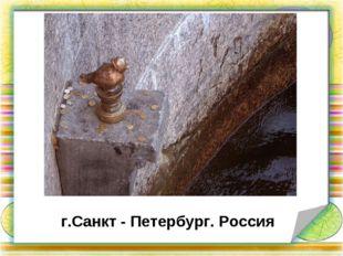 г.Санкт - Петербург. Россия