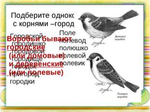Подберите однокоренные слова с корнями –город-, -пол(е)- Городской городишко