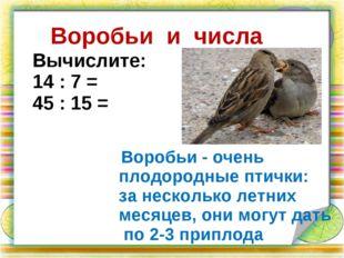 Воробьи и числа Воробьи - очень плодородные птички: за несколько летних месяц
