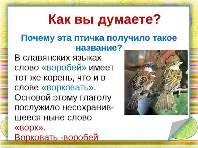 В славянских языках слово «воробей» имеет тот же корень, что и в слове «ворко...