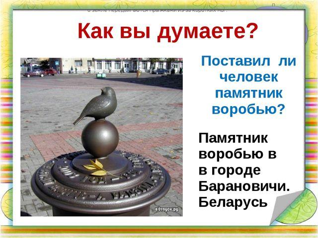 Как вы думаете? Поставил ли человек памятник воробью? по земле передвигаются...