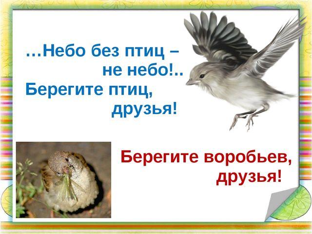 …Небо без птиц – не небо!.. Берегите птиц, друзья! Берегите воробьев, друзья!