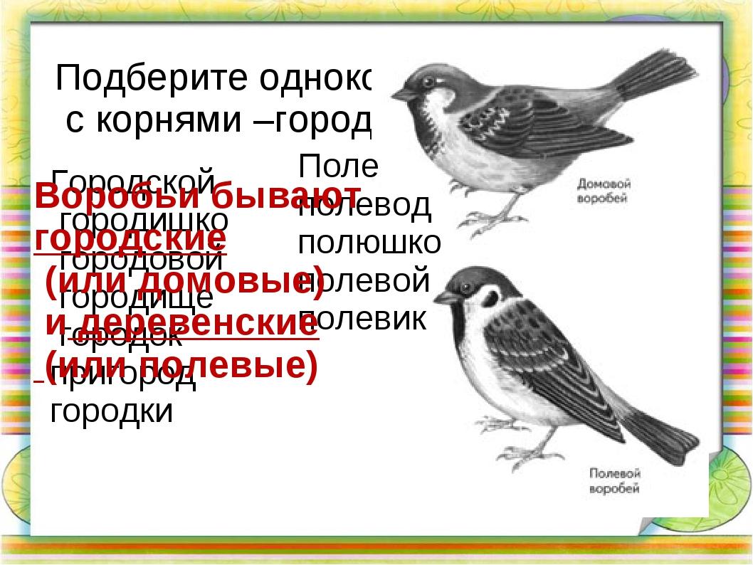 Подберите однокоренные слова с корнями –город-, -пол(е)- Городской городишко...