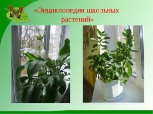 «Энциклопедия школьных растений»