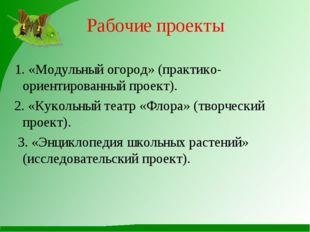 Рабочие проекты 1. «Модульный огород» (практико-ориентированный проект). 2. «