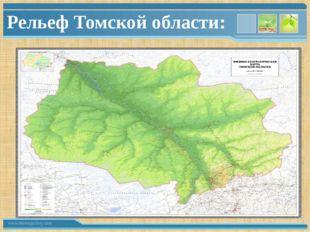 Рельеф Томской области: www.themegallery.com