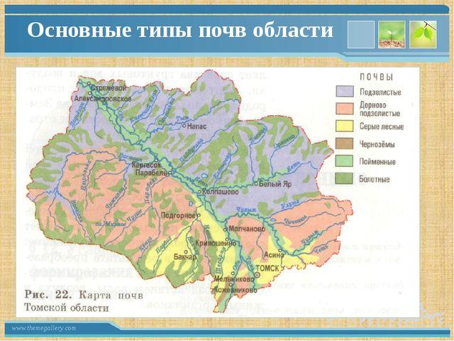 Основные типы почв области www.themegallery.com