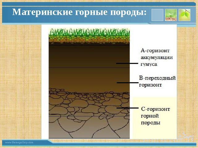 Материнские горные породы: www.themegallery.com