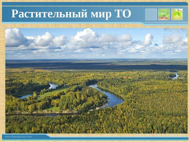 Растительный мир ТО www.themegallery.com