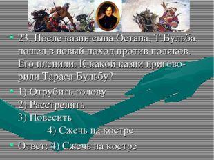 23. После казни сына Остапа, Т.Бульба пошел в новый поход против поляков. Его