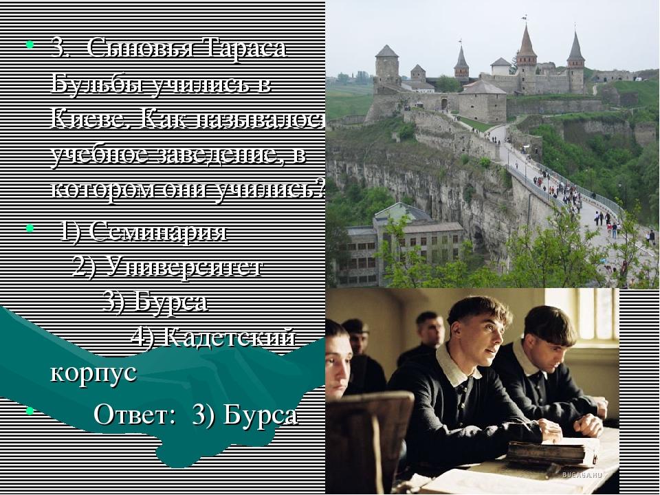 3. Сыновья Тараса Бульбы учились в Киеве. Как называлось учебное заведение, в...