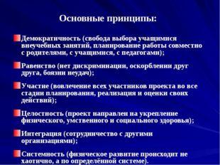 Основные принципы: Демократичность (свобода выбора учащимися внеучебных занят