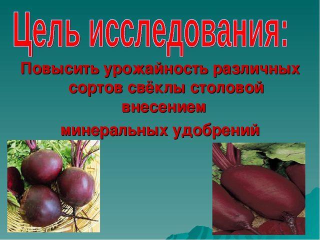Повысить урожайность различных сортов свёклы столовой внесением минеральных у...