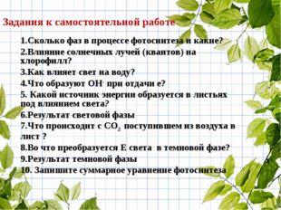 1.Сколько фаз в процессе фотосинтеза и какие? 2.Влияние солнечных лучей (кван