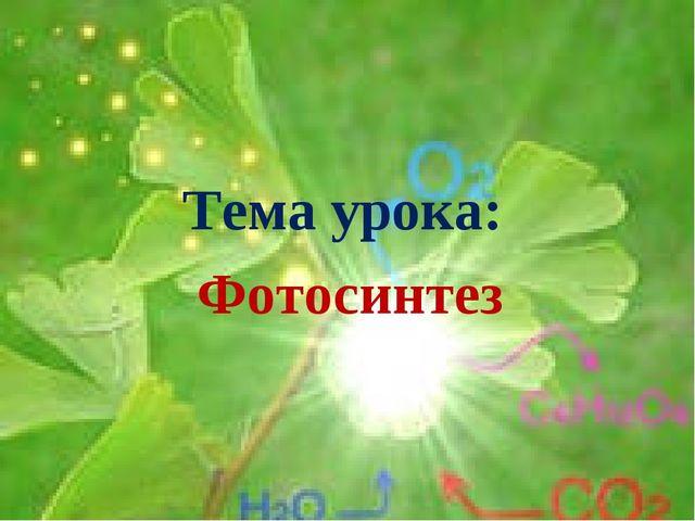 Тема урока: Фотосинтез