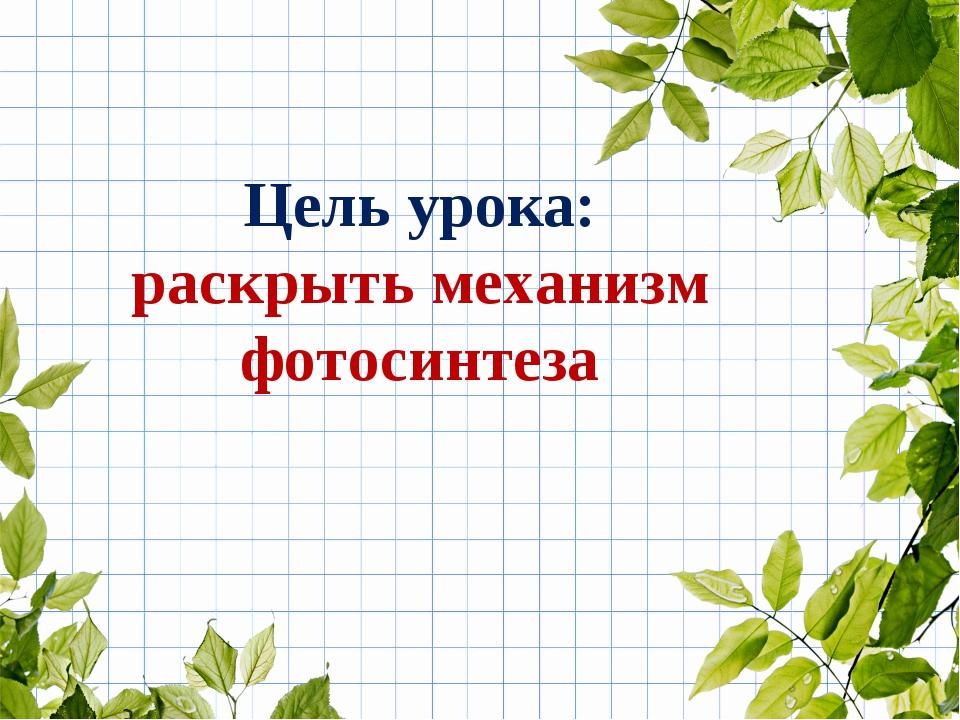 Цель урока: раскрыть механизм фотосинтеза