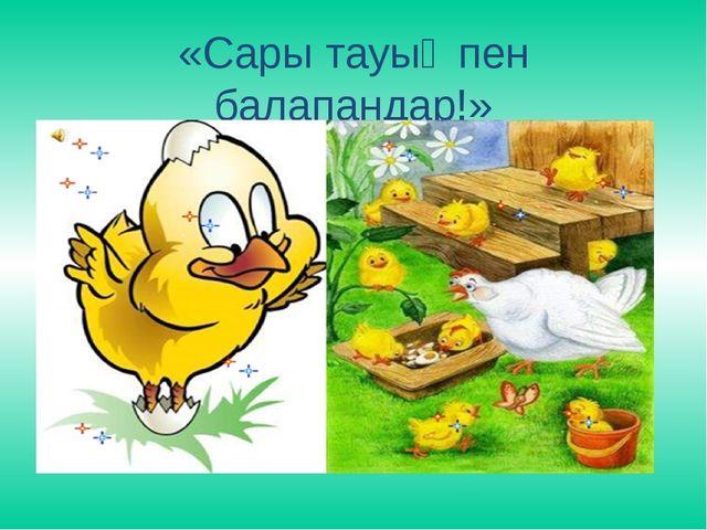 «Сары тауық пен балапандар!»