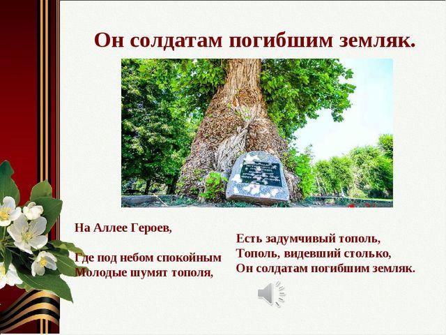 Он солдатам погибшим земляк. На Аллее Героев, Где под небом спокойным Молодые...