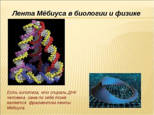 Есть гипотеза, что спираль ДНК человека сама по себе тоже является фрагментом