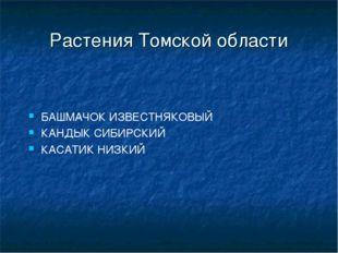 Растения Томской области БАШМАЧОК ИЗВЕСТНЯКОВЫЙ КАНДЫК СИБИРСКИЙ КАСАТИК НИЗКИЙ