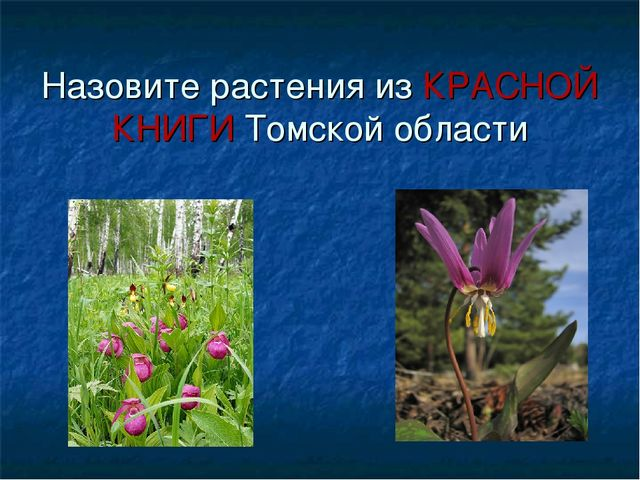Назовите растения из КРАСНОЙ КНИГИ Томской области