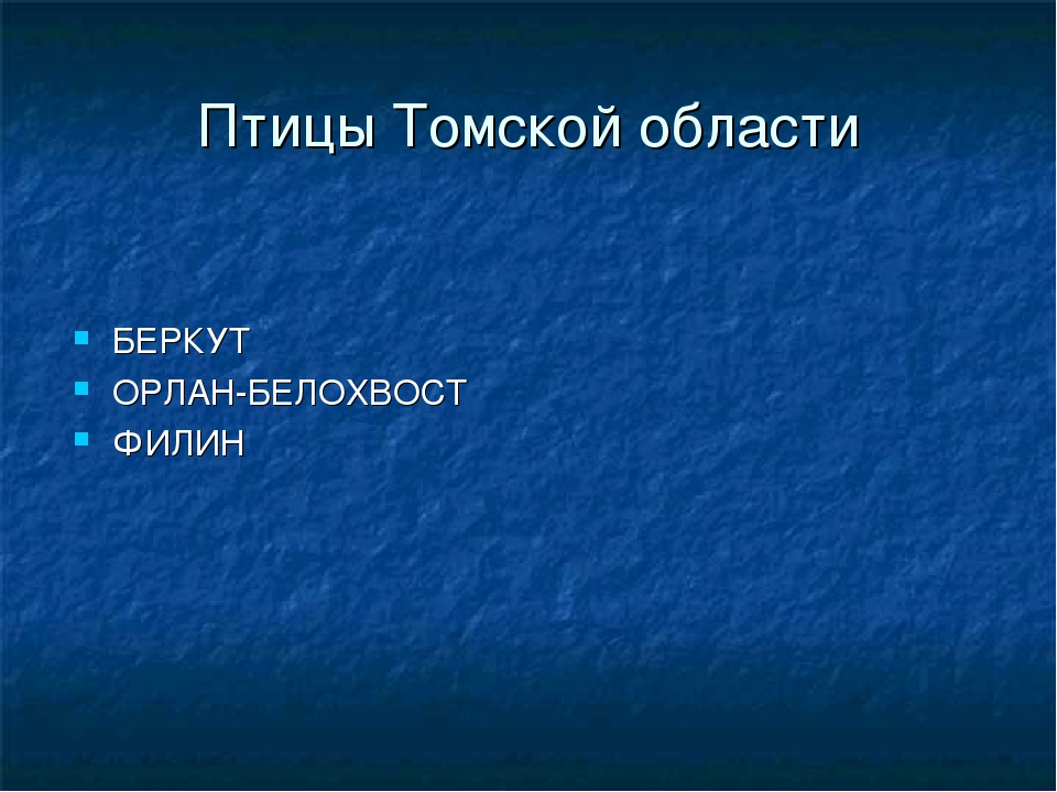 Птицы Томской области БЕРКУТ ОРЛАН-БЕЛОХВОСТ ФИЛИН