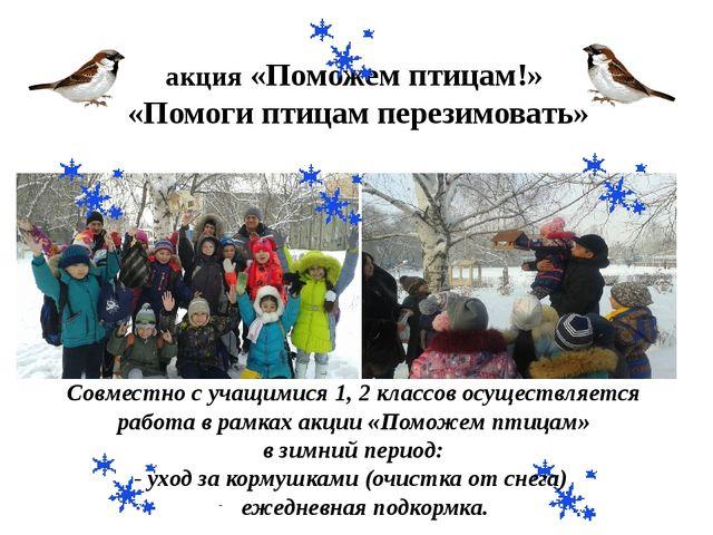 акция «Поможем птицам!» «Помоги птицам перезимовать» Совместно с учащимися 1,...