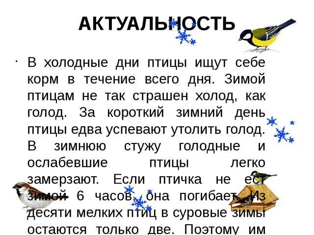 В холодные дни птицы ищут себе корм в течение всего дня. Зимой птицам не так...