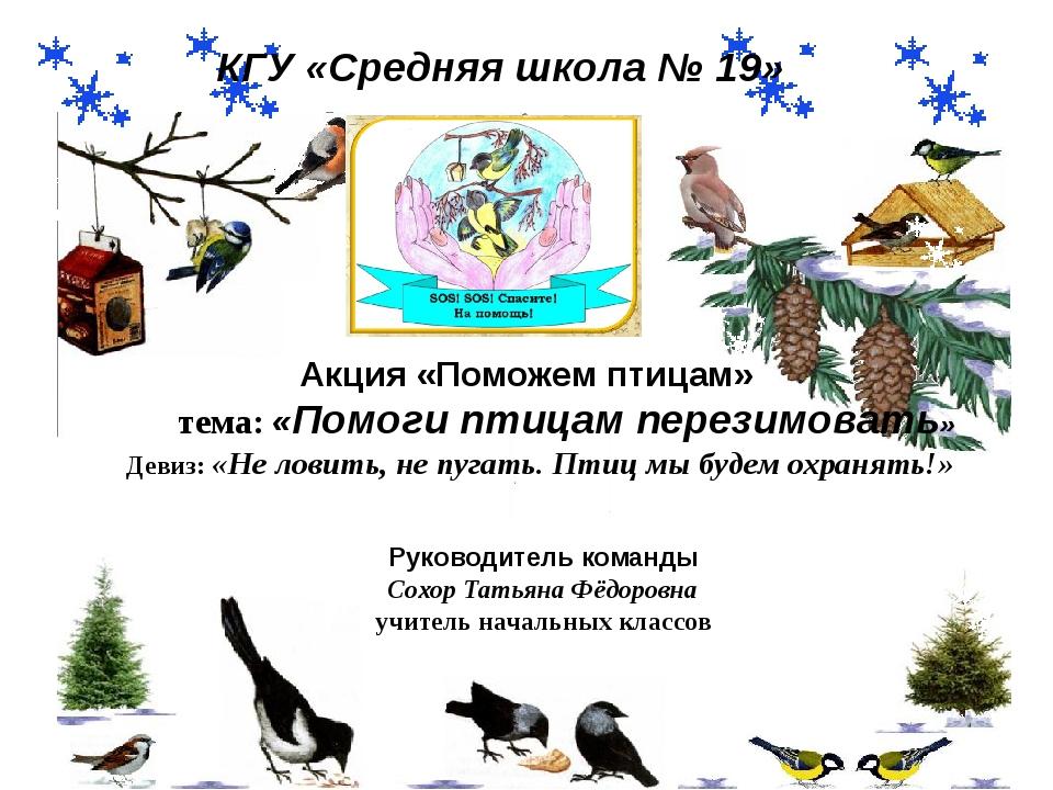 Акция «Поможем птицам» тема: «Помоги птицам перезимовать» Девиз: «Не ловить,...