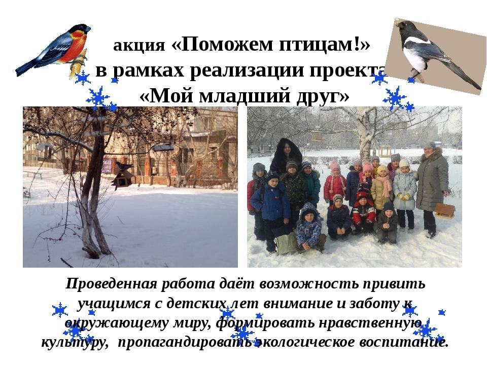 акция «Поможем птицам!» в рамках реализации проекта «Мой младший друг» Провед...
