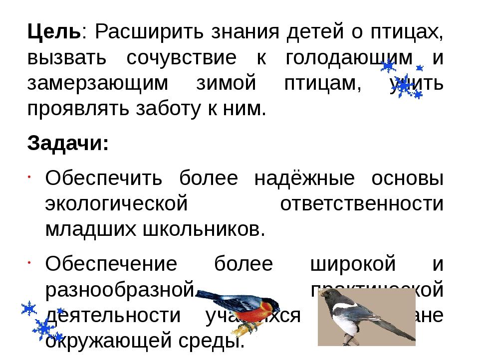 Цель: Расширить знания детей о птицах, вызвать сочувствие к голодающим и заме...