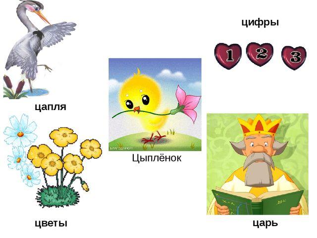 цапля цветы цифры царь Цыплёнок