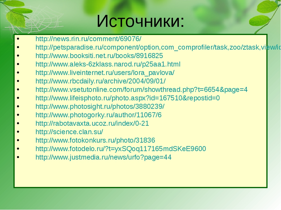 Источники: http://news.rin.ru/comment/69076/ http://petsparadise.ru/component...