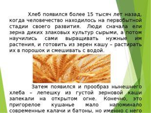 Хлеб появился более 15 тысяч лет назад, когда человечество находилось на пер