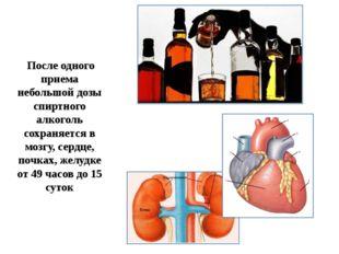 После одного приема небольшой дозы спиртного алкоголь сохраняется в мозгу, с