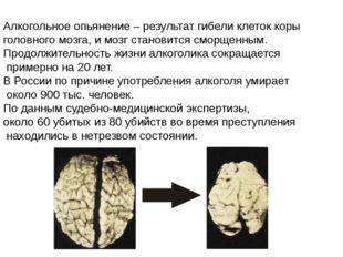 Алкогольное опьянение – результат гибели клеток коры головного мозга, и мозг