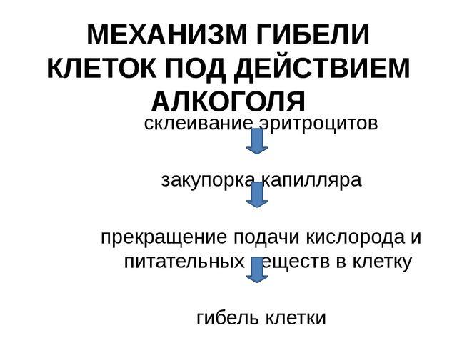 МЕХАНИЗМ ГИБЕЛИ КЛЕТОК ПОД ДЕЙСТВИЕМ АЛКОГОЛЯ склеивание эритроцитов закупорк...