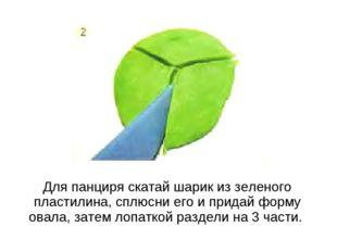 Для панциря скатай шарик из зеленого пластилина, сплюсни его и придай форму о