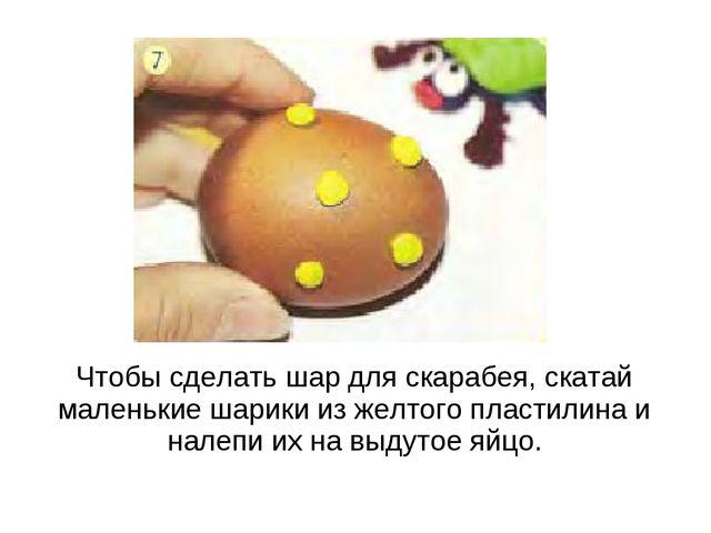 Чтобы сделать шар для скарабея, скатай маленькие шарики из желтого пластилина...