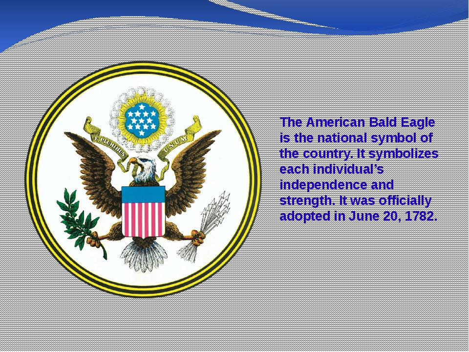 The American Bald Eagle is the national symbol of the country. It symbolizes...