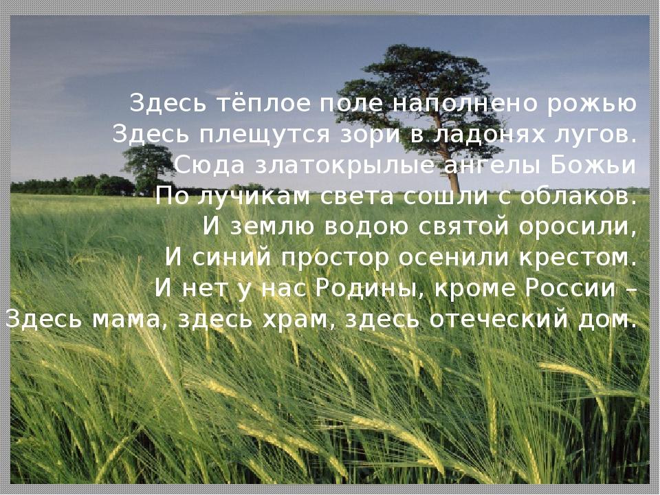 Здесь тёплое поле наполнено рожью Здесь плещутся зори в ладонях лугов. Сюда з...