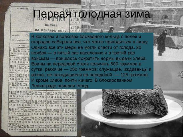 В колхозах и совхозах блокадного кольца с полей и огородов собирали все, что...