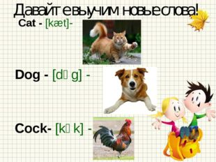 Cat - [kæt]- Dog - [dɒg] - Cock- [kɒk]- Давайте выучим новые слова!