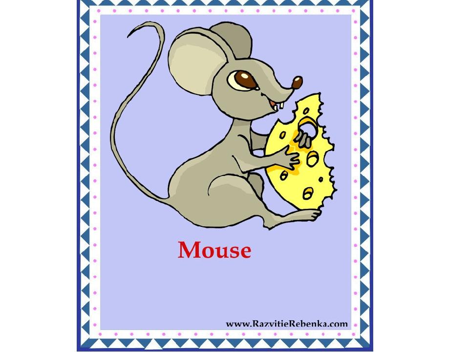 Картинки животных для детей с надписями на английском языке