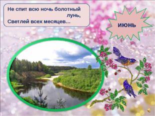 Не спит всю ночь болотный лунь, Светлей всех месяцев… июнь
