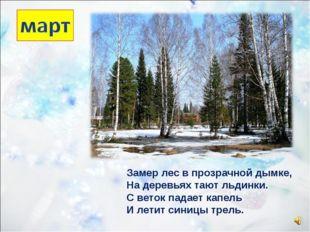 Замер лес в прозрачной дымке, На деревьях тают льдинки. С веток падает капель
