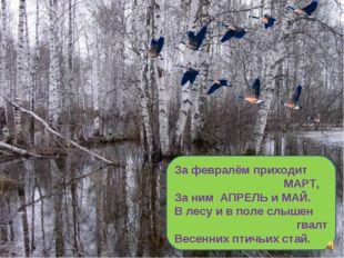 За февралём приходит МАРТ, За ним АПРЕЛЬ и МАЙ. В лесу и в поле слышен гвалт