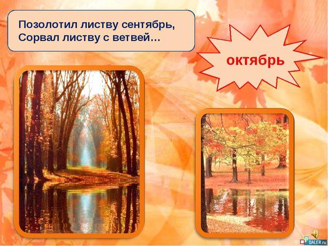 Позолотил листву сентябрь, Сорвал листву с ветвей… октябрь