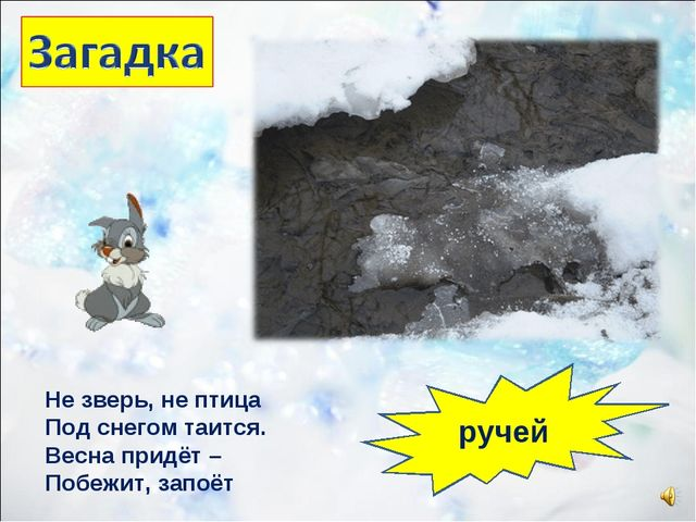 Не зверь, не птица Под снегом таится. Весна придёт – Побежит, запоёт ручей